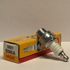 Žvakė BM6A